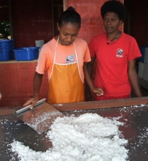 drying the coconut flesh