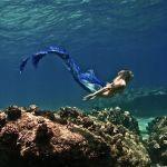 a beautiful mermaid